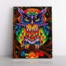 Paint By Numbers- 40x50cm  Colourful Owl