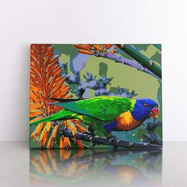 PaintbyNumber-40x50cm  Colourful parrot