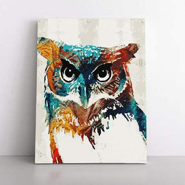 Paint By Numbers- 40x50cm  Owl of colour