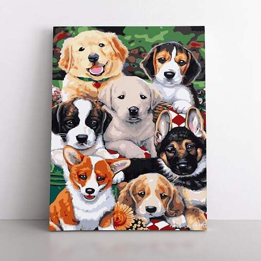 Paint By Numbers- 40x50cm  puppy lover