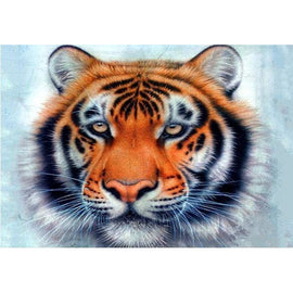 Diamond Art Picture Half Drill Size 30X40 Tiger