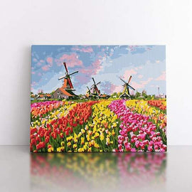 Paint By Numbers- 40x50cm  tulips and windmills