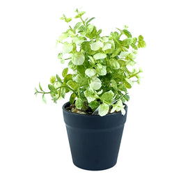 Artificial Plant- White Style 34 15cm