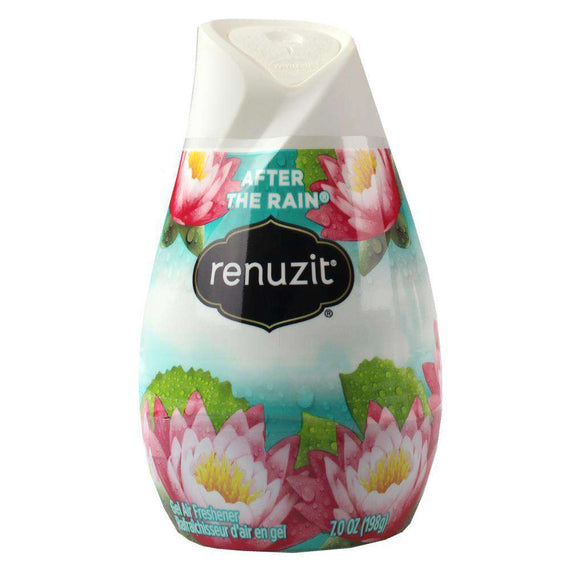 Renuzit 198G Gel Air Freshener After The Rain