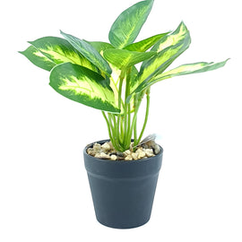 Artificial Plant- Green Style 13 15cm