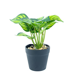 Artificial Plant- Green Style 4 15cm