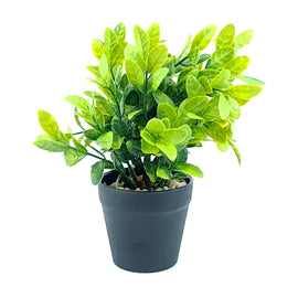 Artificial Plant- Green Style 5 15cm