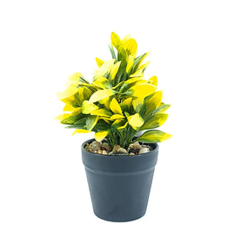 Artificial Plant- White Style 37 15cm