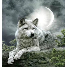 Diamond Art Picture Half Drill Size 30X40 White Wolf