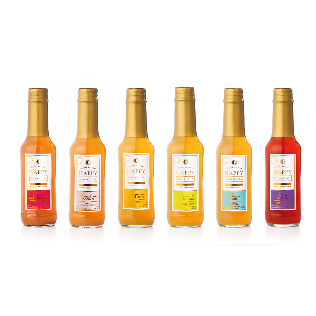 The New Six Pack 160ml - Happy Kombucha Lab