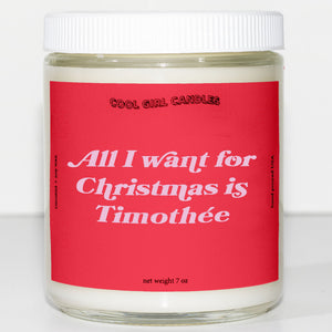 all i want for christmas is timothee chalamet candle this smells like timothee chalamet cute aesthetic candle christmas decor candle