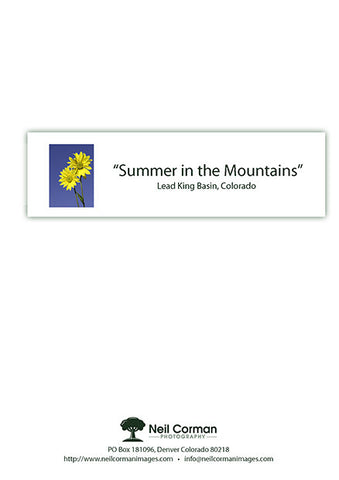 Summer in the Mountains Note Card