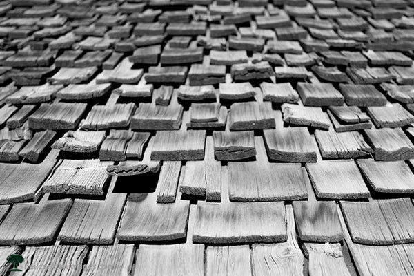 Roof at Clear Creek History Park