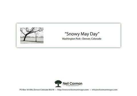 Snowy May Day Note Card