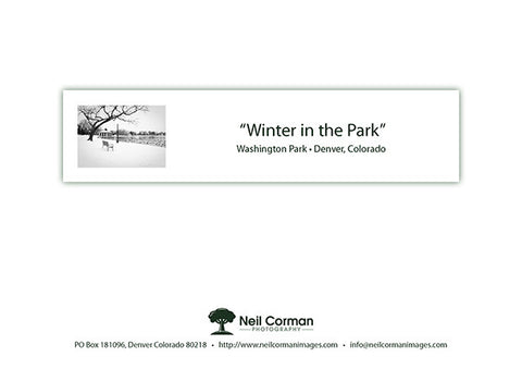 Winter in Washington Park Note Card