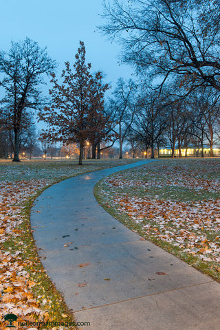 Path in Washington Park