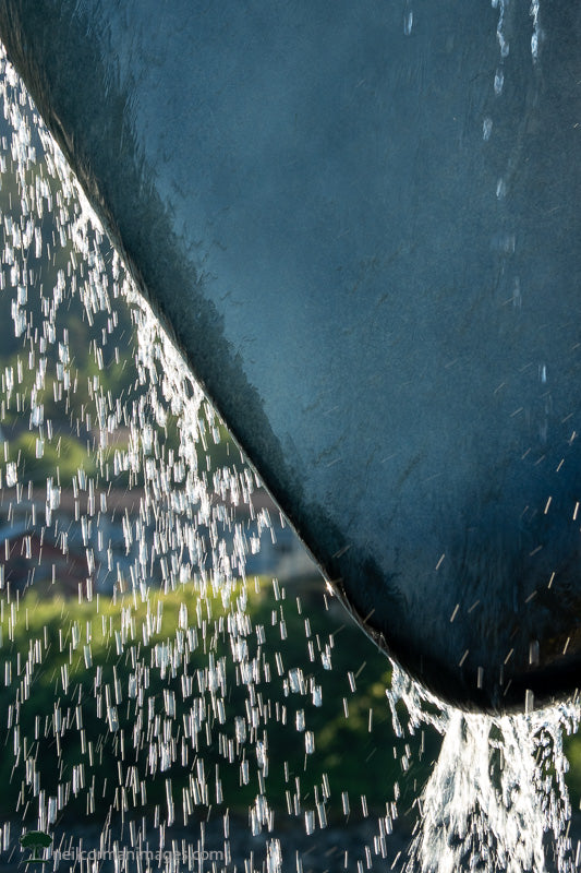 Water on a Whale Sculpture