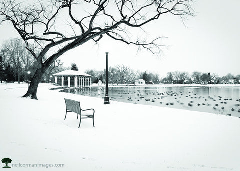 Winter in Washington Park<br />Holiday Cards