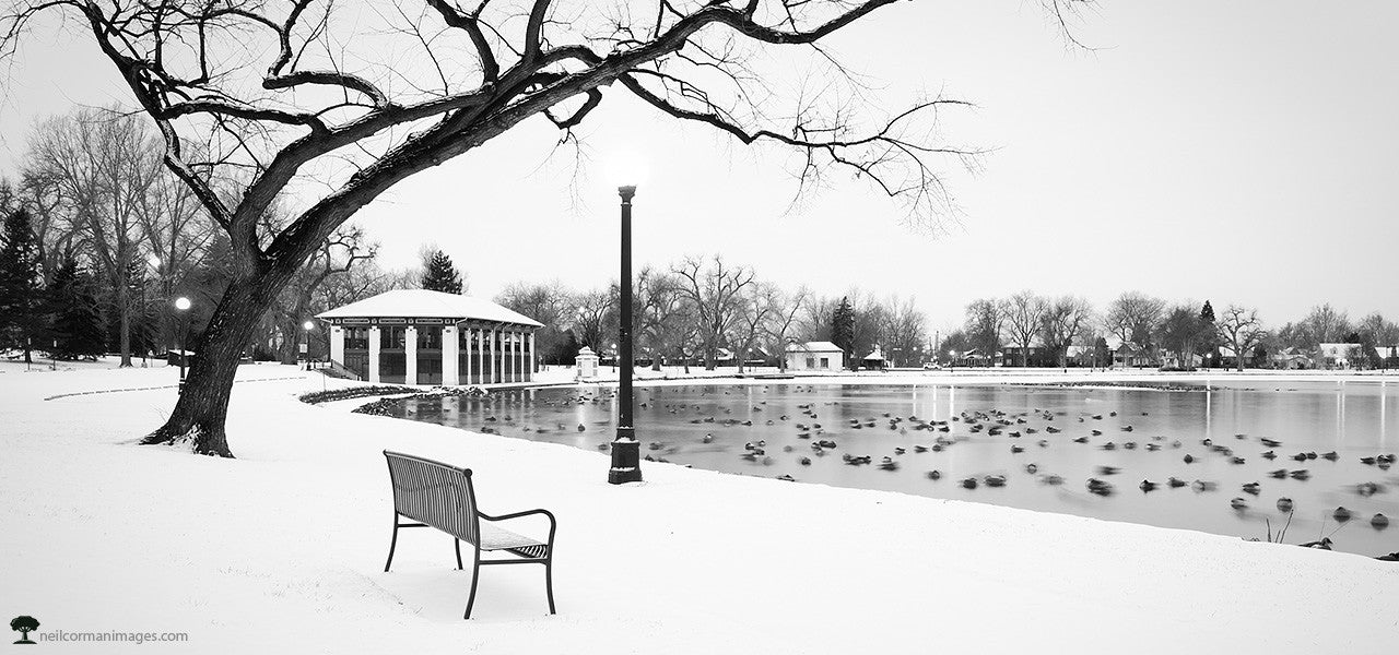Winter Morning in Washington Park - Denver