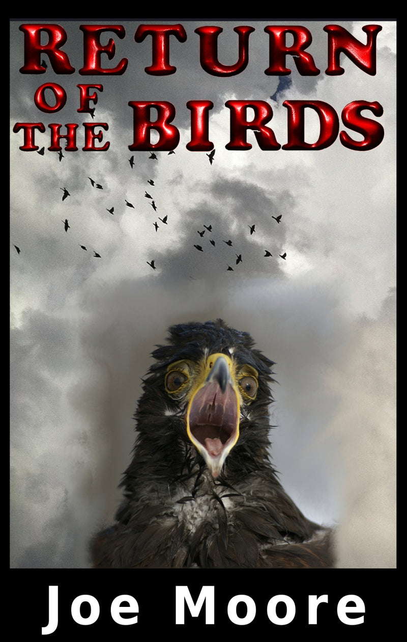 Return of the Birds - Hardcover
