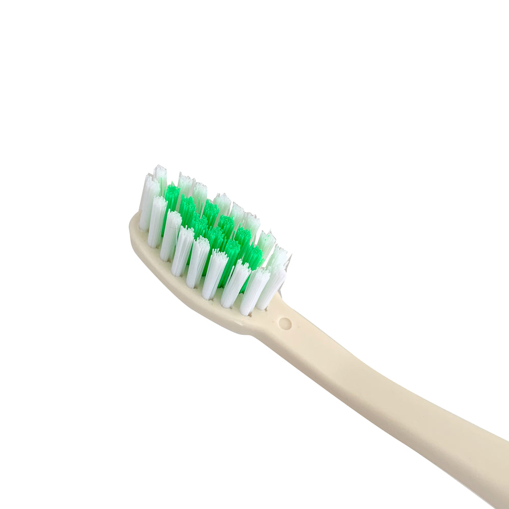 Cepillo Dental Eco-Friendly | de Semilla de Aguacate