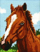 Load image into Gallery viewer, Brown Horse (Tapestry Kit)
