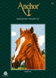 Brown Horse (Tapestry Kit)