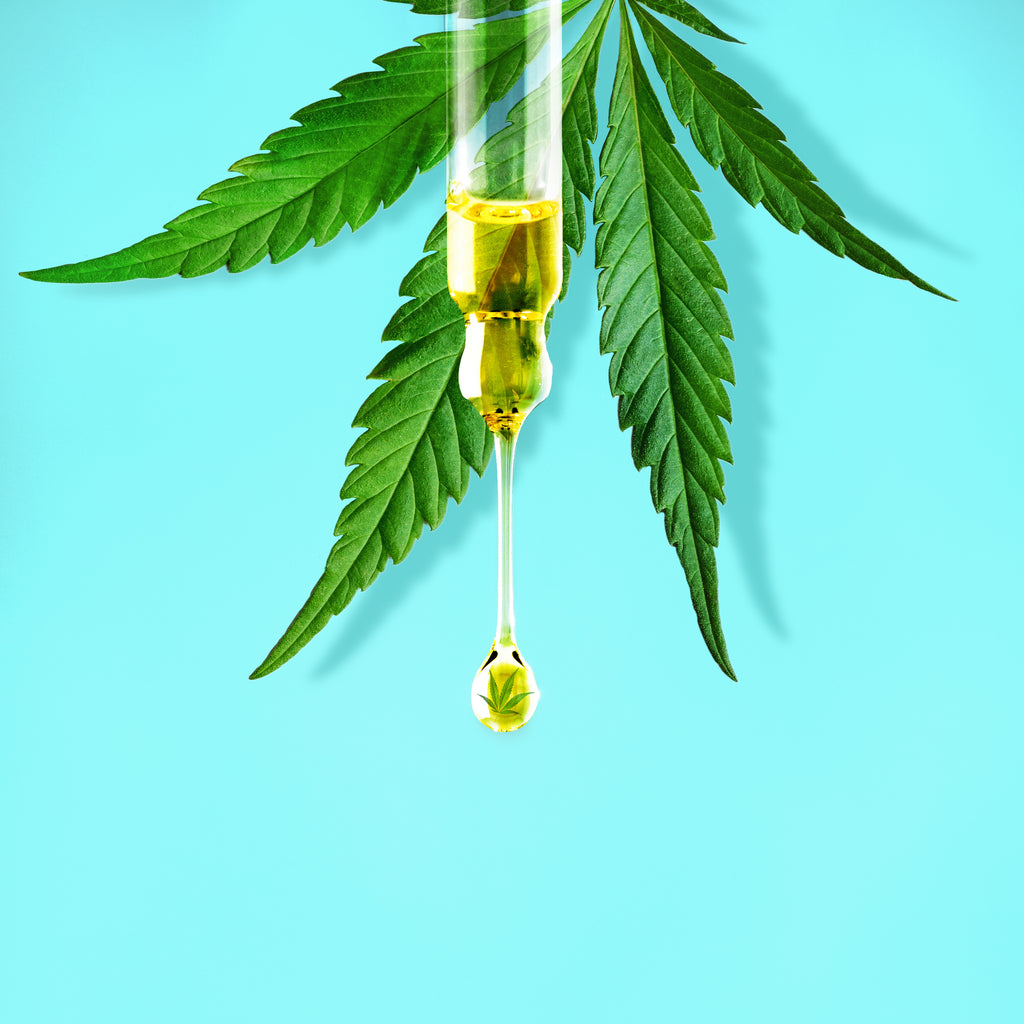 The CBD Extraction Process