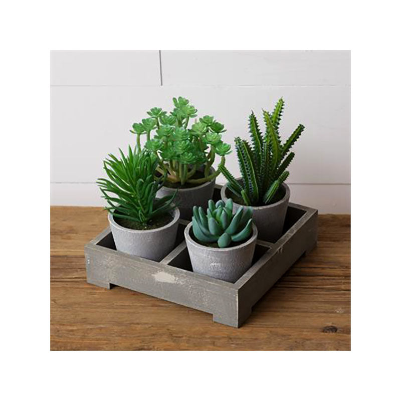 Assorted Faux Succulents In Wooden Crate 8F6434