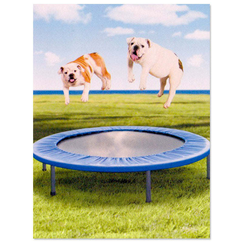 Bouncing Bulldogs Friendship Card 10935