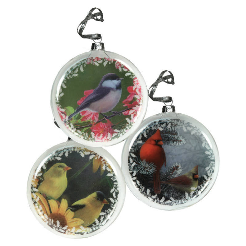 Glass Bird Christmas Ornaments 063