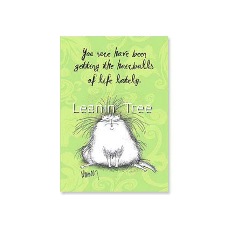 Leanin' Tree Hang In There Encouragement Card 48972