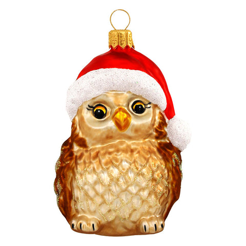 Owl With Santa Hat Glass Ornament