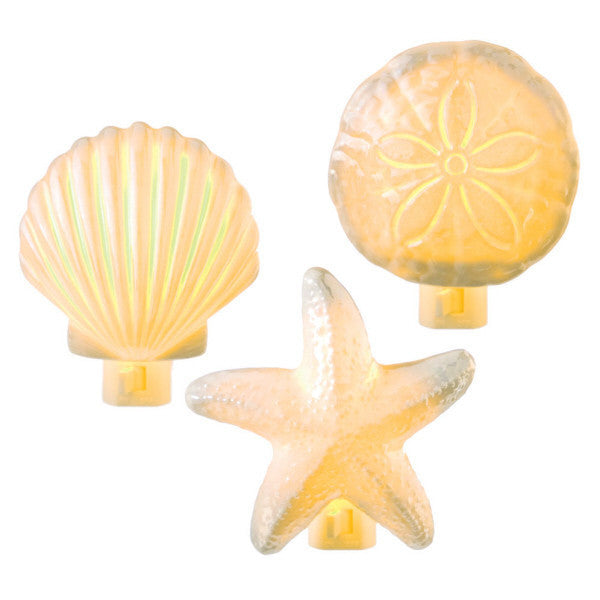 Sea Shells Night Lights 666265