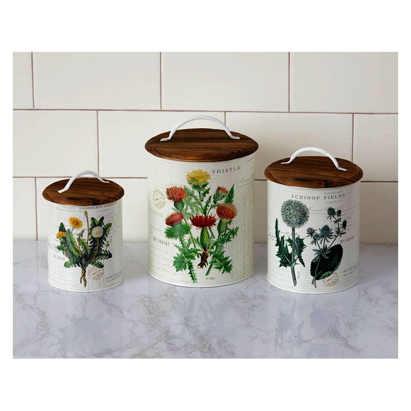 Thistle Echinop and Dandelion Botanical Canisters 5T1963