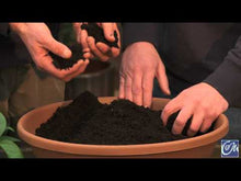 Load and play video in Gallery viewer, Schoodic Blend Cow Compost 1cft