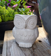 Load image into Gallery viewer, Owl Planters