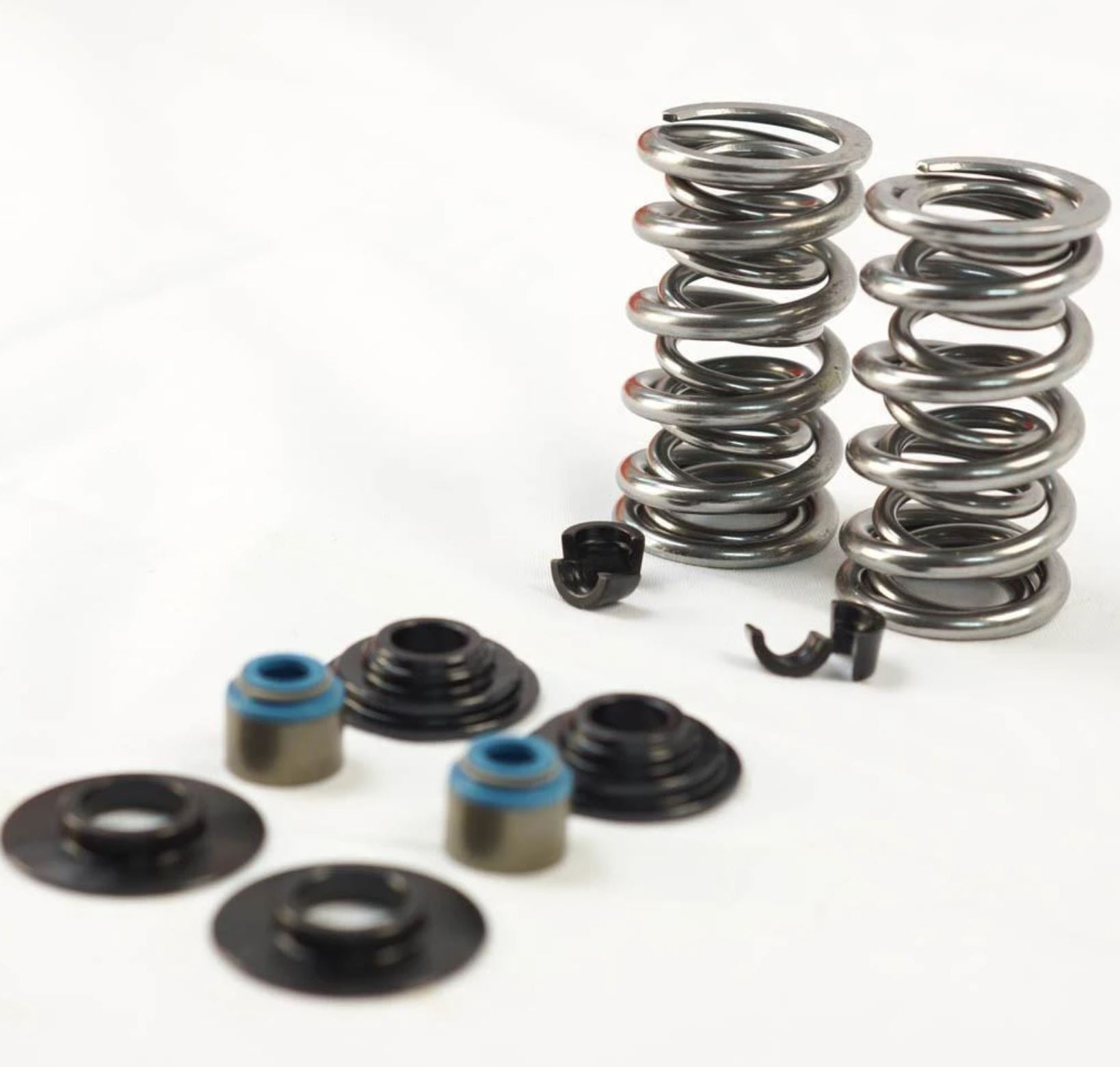 DUAL VALVE SPRING KIT, MANLEY TO SUIT LS