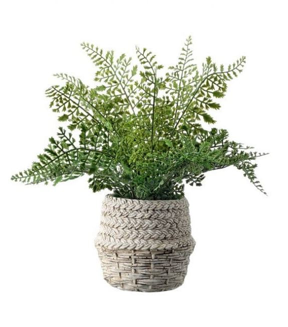 Natural Touch Leather Fern in Cement Pot
