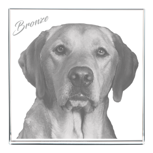3D Square Frame - Dog Headshot