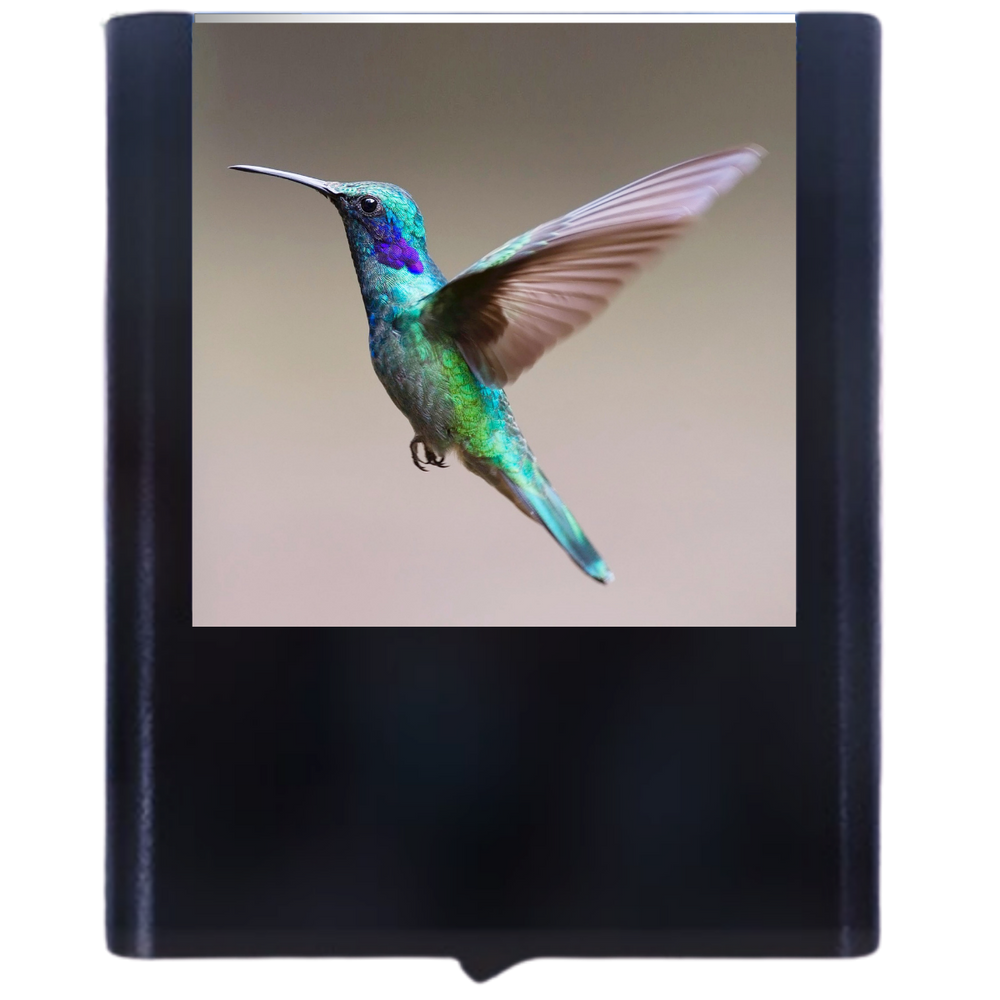Load image into Gallery viewer, Hummingbird-1