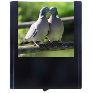 Load image into Gallery viewer, Pigeon