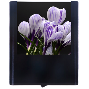 Load image into Gallery viewer, Crocus Flower-1