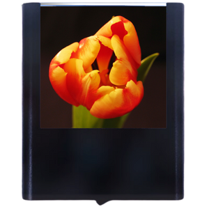 Load image into Gallery viewer, Flower-3