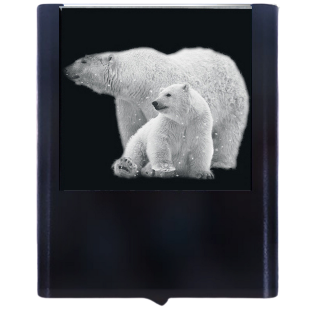 Night Light Polar Bears