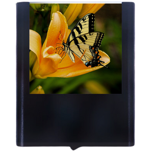 Load image into Gallery viewer, Butterfly-1