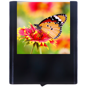 Load image into Gallery viewer, Butterfly-5