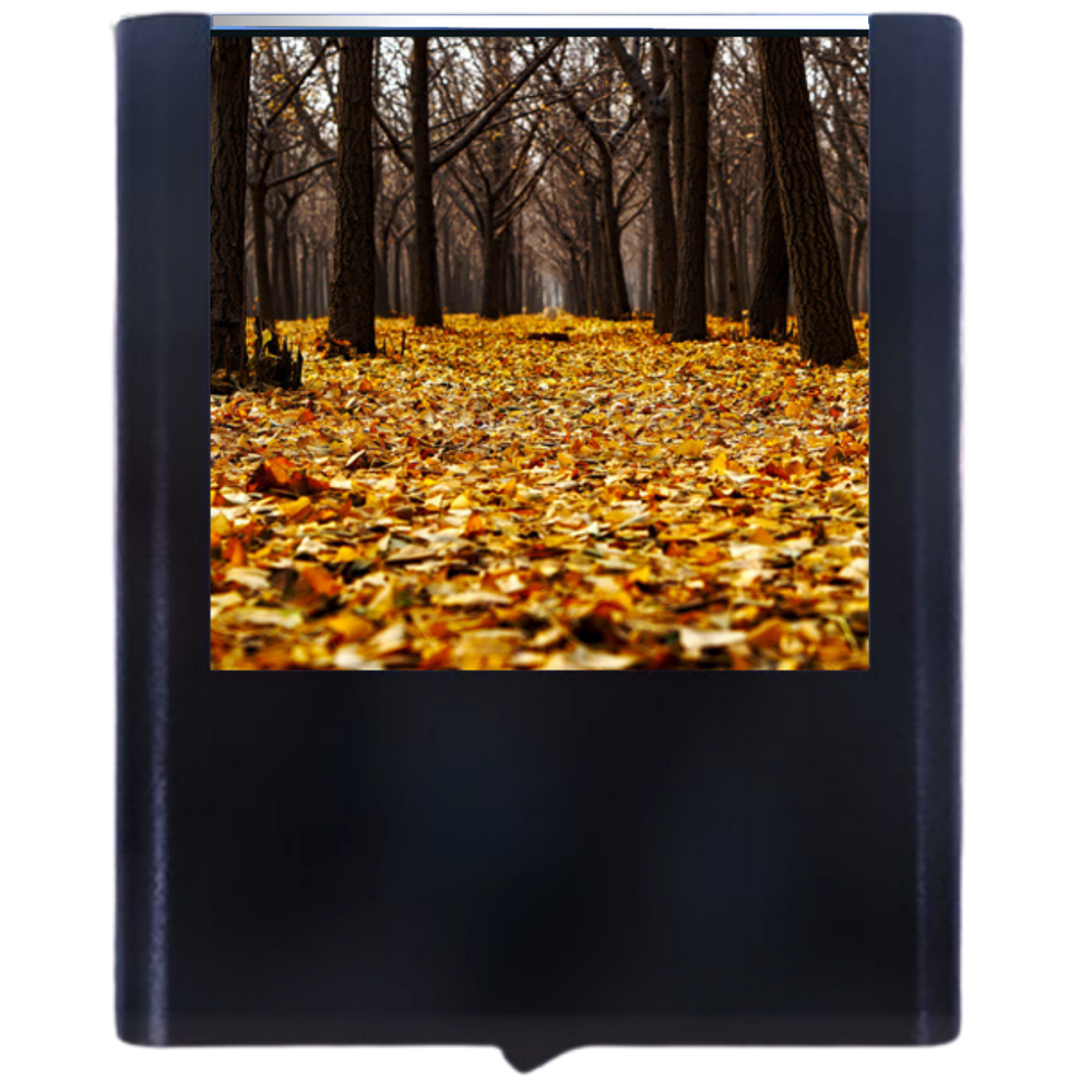 Load image into Gallery viewer, Autumn-1