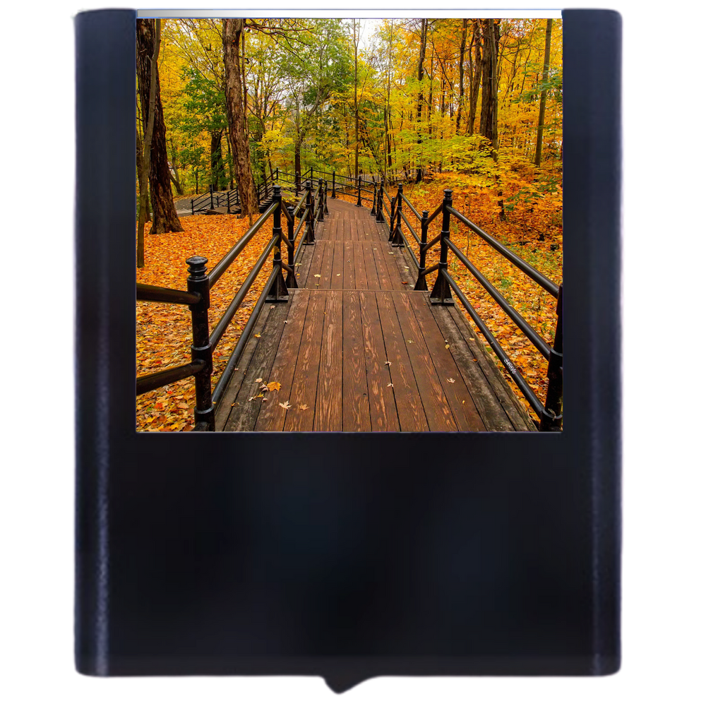 Load image into Gallery viewer, Autumn-3