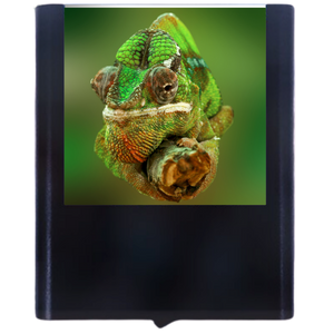 Load image into Gallery viewer, Chameleon-1